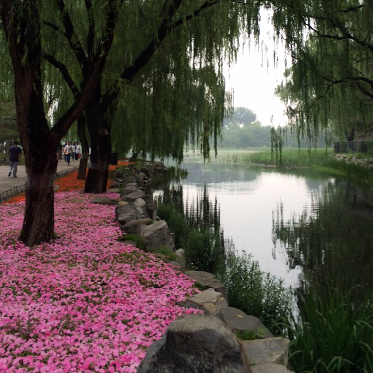 A park in China